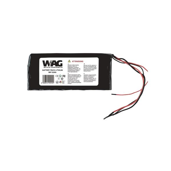 Pacco batterie al litio 24V 10
